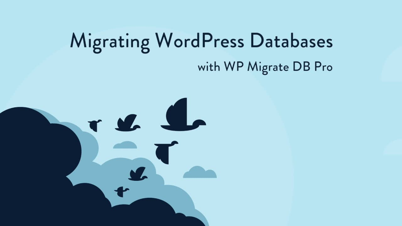 WP Migrate DB Pro Coupon Code