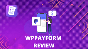 WPPayForm Review 12