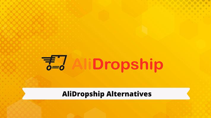 Top 10+ Alidropship Alternatives